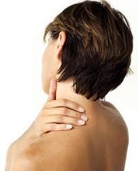 Glava i vratna kralježnica